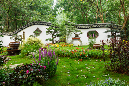 traditional plants: The beauty of the Chinese traditional gardens and green bonsai plants Stock Photo