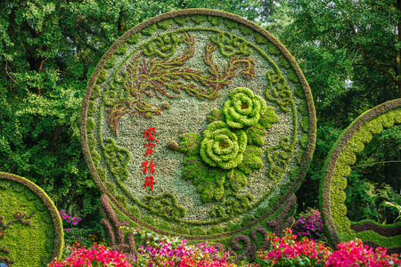 chinese phoenix: Hangzhou, China - on August 26, 2015: botanical garden beautiful plant gardening scene,Hangzhou botanical garden use plants pose beautiful animal image of the phoenix.