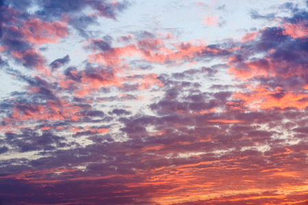 rosy: In the evening the rosy clouds of the sky