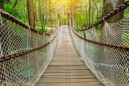 bridge in nature: suspension bridge in the quiet forest