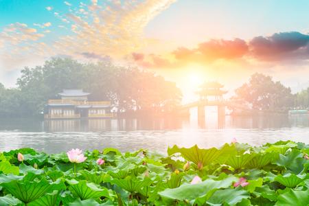 항주 서호, 개화 연꽃과 중국 관 건축 풍경, 중국 스톡 콘텐츠