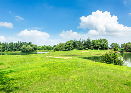 green meadow and trees with pond landscape in the nature park,beautiful summer season 스톡 콘텐츠