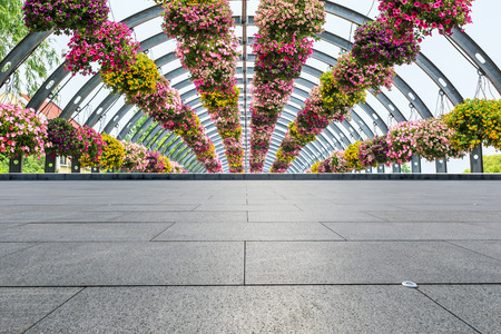 Empty square floor and arched morning glory flower tunnel  스톡 콘텐츠