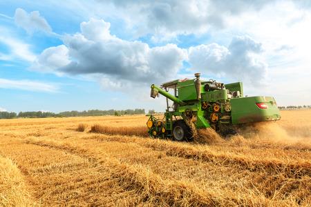 Mähdrescher bei der Weizenernte an einem sonnigen Sommertag Standard-Bild