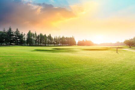Erba verde e foresta con bellissime nuvole al tramonto