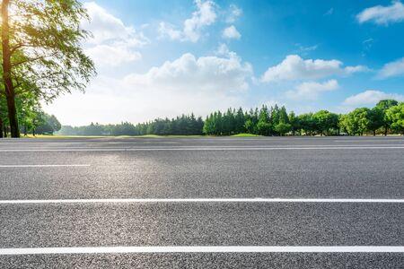 Landstraße und grüne Waldnaturlandschaft im Sommer Standard-Bild