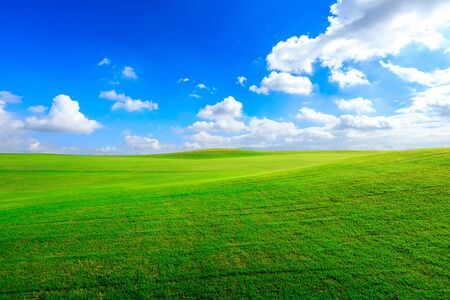 Green grass field and blue sky with white clouds.