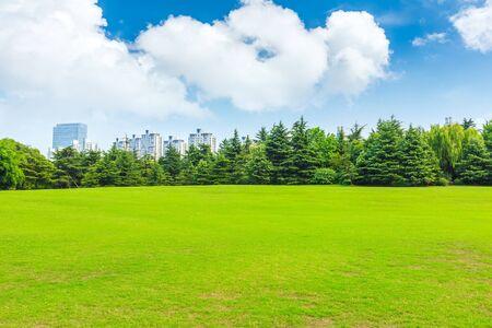 Erba verde e skyline della città con edifici a Shanghai, Cina.