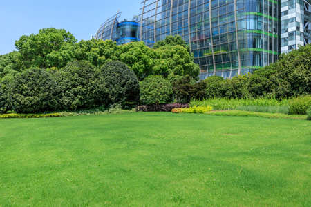 Green grass and modern commercial buildings in Shanghai,China.