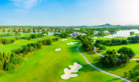 Aerial view of green grass and tree on golf course.
