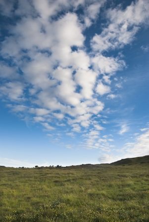 lonely landscape with grass and blue sky Stock Photo - 21078755
