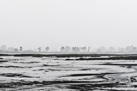 coastal landscape with fog in the morning photo