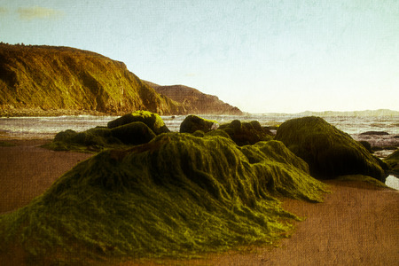 vintage shot of the Cantabrian coast ( Spain ) photo