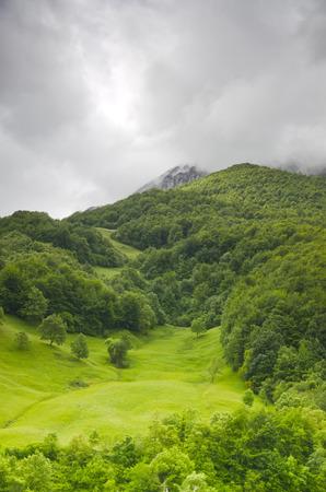 picos: Picos de Europa mountains range in northern Spain.