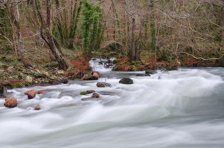 galicia: Eume river. Fragas do Eume. Natural park in Galicia (Spain).