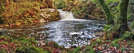 mountain stream running over mossy rocks