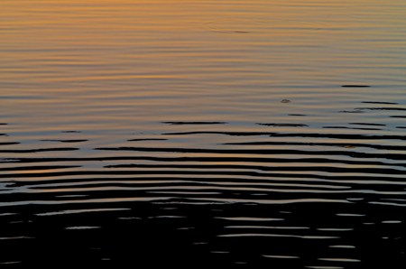heaving: Abstract background of water at sunset