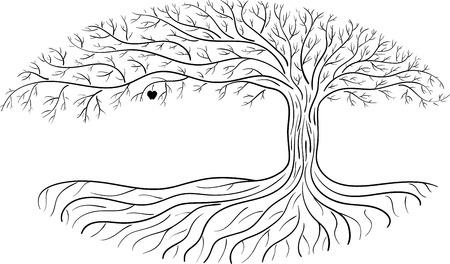 Druidic árbol de manzana, la silueta ovalada, logotipo blanco y negro con una manzana.