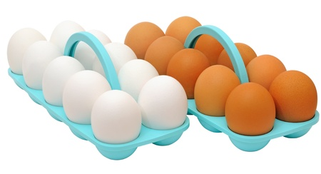 A dozen eggs with white shells and a dozen eggs with brown shells in plastic trays