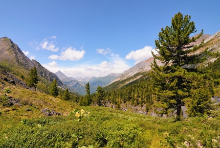 buryatia: In the Siberian mountain valley Perevalnaya. Eastern Sayan. The Republic of Buryatia