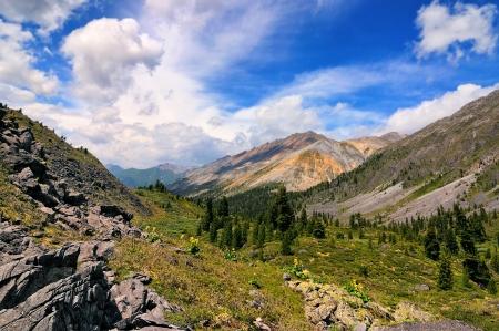 buryatia: Summer view of the mountain valley. Eastern Sayan. Republic of Buryatia Stock Photo