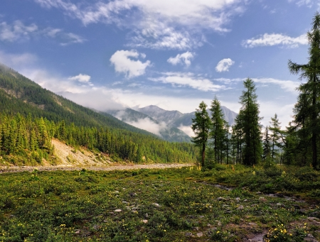 A small meadow in the valley of a mountain river. Eastern Sayan. Republic of Buryatia Stock Photo