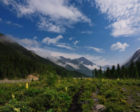 Blooming meadow in a mountain valley and beautiful clouds in the sky. Shumak valley. Republic of Buryatia Stock Photo