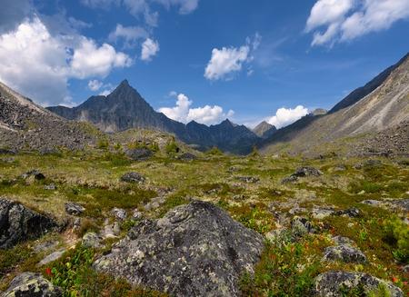 Alpine tundra in July. TUNKA ridge. Sayan mountains. Republic of Buryatia