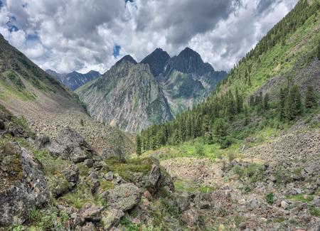 tunka range: A small area on the border of the mountain taiga forests.Tunka range. Sayan mountains. Buryatia. Russia