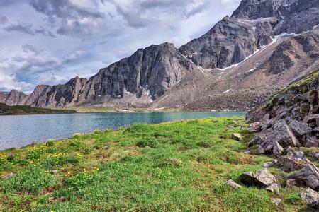 tunka range: Crude meadow with yellow flowers on the shore of a mountain lake. Eastern Siberia.The Republic of Buryatia