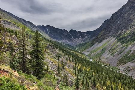 tunka range: Upper part of the Siberian mountain river valley in gloomy weather. Dark coniferous taiga of Siberian pine. Sayan mountains. The Republic of Buryatia Stock Photo