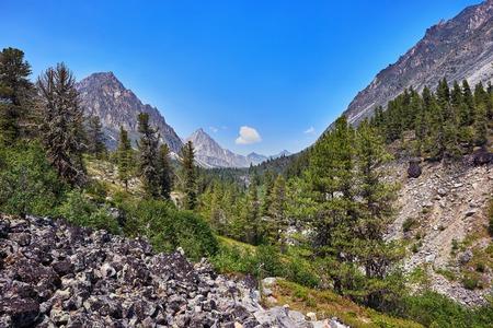 tunka range: Mountain woodland scenery. Eastern Siberia. Sayan mountains. July