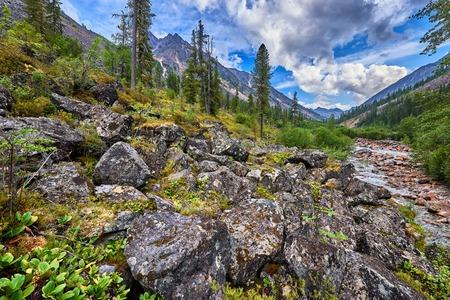 tunka range: Large boulders in the mountain rare woods near the small Siberian river . Eastern Sayan . Buryatia Stock Photo