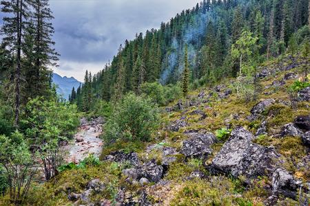 tunka range: Smoke from the fire on the mountain taiga . Overcast . Dark coniferous taiga in a mountain stream . Eastern Siberia. Russia