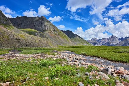 tunka range: Primordial nature of Eastern Siberia . Stream and mountain meadow summer day . Eastern Sayan . Buryatia