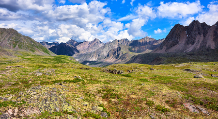 primordial: Shallow alpine tundra . Primordial nature of Eastern Siberia . Russia