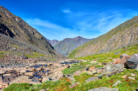 primordial: Siberian highlands . Tundra. Eastern Sayan mountains . Russia