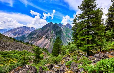 tunka range: Fantastic landscape in Siberian mountains . Trees in highlands . Eastern Sayan .