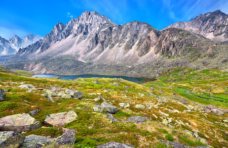 Image result for siberian tundra