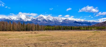buryatia: Meadow with a dry grass in early May in a wooded area . Eastern Sayan . Buryatia . Russia Stock Photo