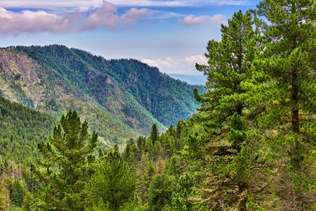 Siberian coniferous taiga in foothills. Eastern Sayan Mountains. Russia Stock Photo