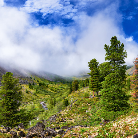 bourn: Rising mist over valley of mountain stream. Forest near border of tundra. Eastern Sayan. Siberia. Russia