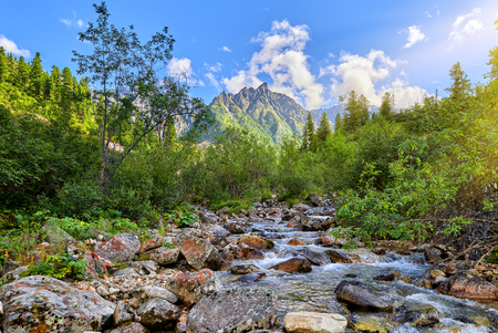 Mountain stream on sunny day. Water flows between large stones. Eastern Sayan. Russia Stock Photo