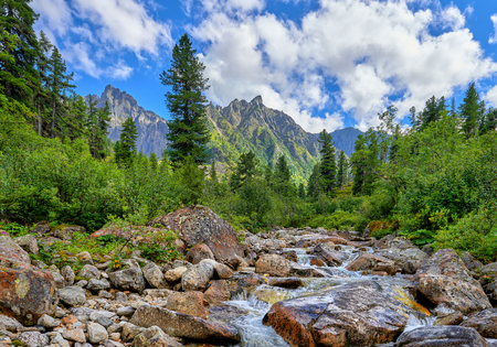 Mountain stream in primeval forest in Eastern Siberia. Sayan. Russia Stock Photo