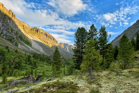 Early morning in Siberian mountain valley. June. East Sayan. Russia Stock fotó