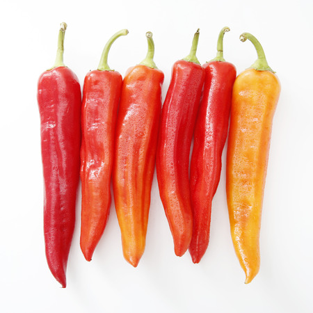 gules: Red pepper Stock Photo