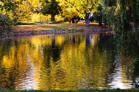 A beautiful park with a pond in autumn Stock Photo