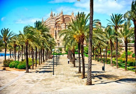 Cathedral of la Seu Majorca in Palma de Mallorca.  Balearic islands photo