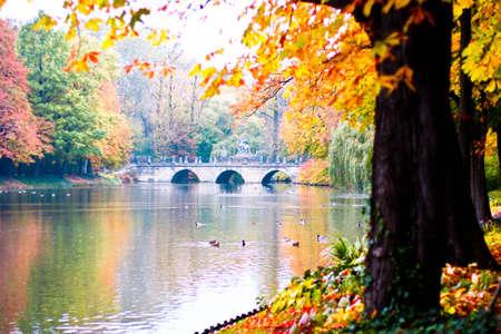 Idyllic autumn scenery of the Lazienki Royal Park in Warsaw, Poland photo