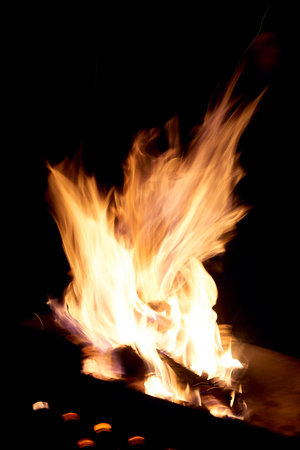 Fire flames on a black background. The fire burns on a black background.